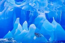 lanting antartica
